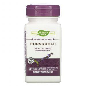 Форсколин, Enzymatic Therapy, 60 капсул (