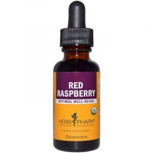 Малина лесная, Red Raspberry, Herb Pharm, экстракт листа, органик, 29,6 мл
