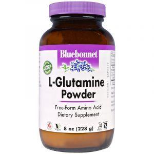 L- глютамин, L-Glutamine, Bluebonnet Nutrition, порошок, 228 грамм (Default)