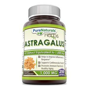 Астрагал, Astragalus, Pure Naturals, 1000 мг, 250 капсул