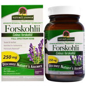 Колеус форсколии, Forskohlii, Nature's Answer, 250 мг, 60 кап